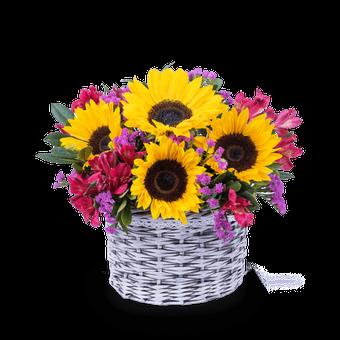 Sunny Joy: Sunflowers and Alstroemerias