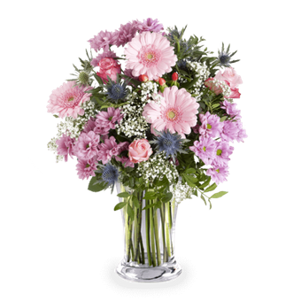 rosa blumen online verschicken in 24 stunden floraqueen. Black Bedroom Furniture Sets. Home Design Ideas