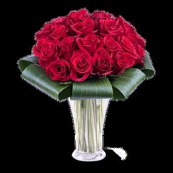 Amour Addictif : 25 Roses Rouges