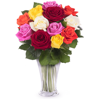 Symphony of Colours: Mixed Roses