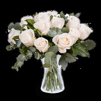 Traum in Weiß: 12 Weiße Rosen
