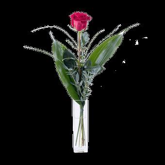Flecha de Cupido: Rosa Roja