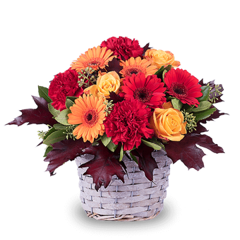 Autumn Basket: Gerberas and Carnations