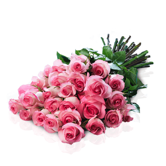 Marylin Kiss: 25 Pink Roses