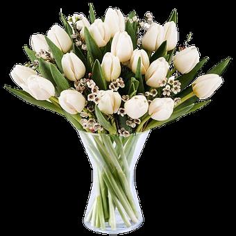 Serenidad: 20 Tulipanes Blancos