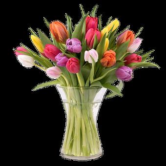 Delicias de Primavera: 20 Tulipanes Multicolor