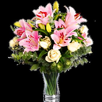 Poésie Naturelle : Lys et Roses
