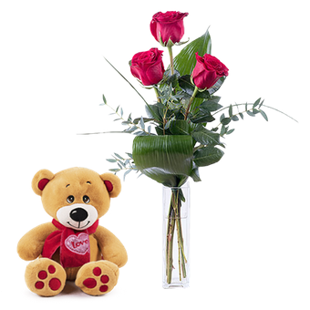 First Love: Teddy and 3 Red Roses