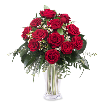 Infinite Love: 12 Red Roses