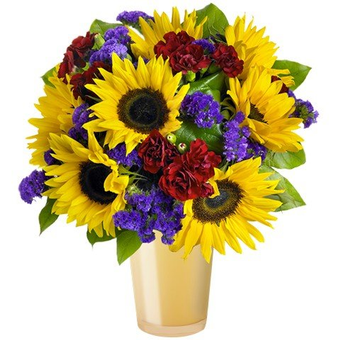 Breath Of Colour: Sunflowers and Carnations