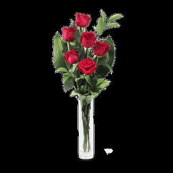 Amour Hypnotique : 6 Roses Rouges