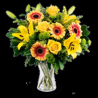 Sonnenpracht: Rosen, Lilien & Gerbera