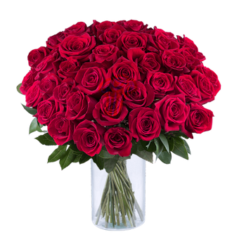 French Kiss: 40 Red Roses