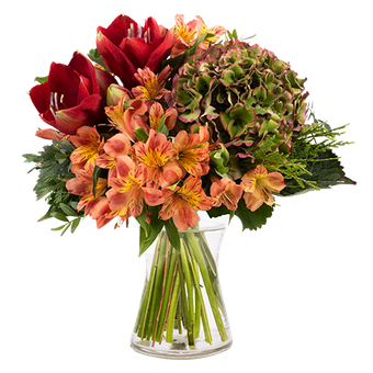 Calidez otoñal: Amarilis y Hortensia