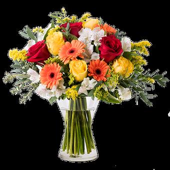Energia Floreale: Mix di Fiori Arancioni