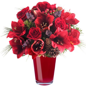 Emotionales neues Jahr: Amaryllis und rote Rosen