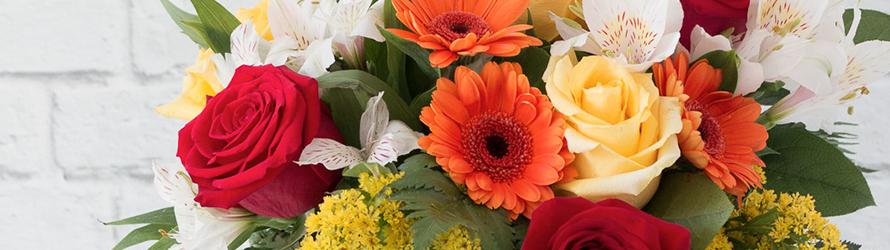 Felicitar con flores