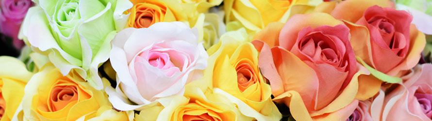 Consegna di rose a domicilio