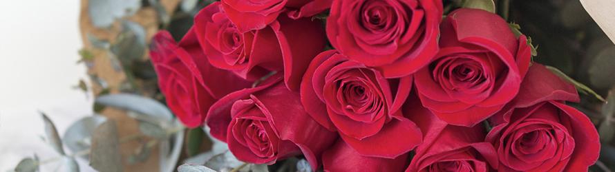 Twoja niezawodna Wysyłka kwiatowa
