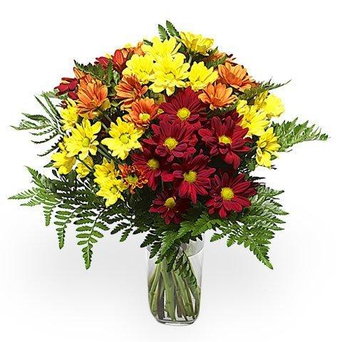 Goldener Blumenstrauß: farbige Chrysanthemen