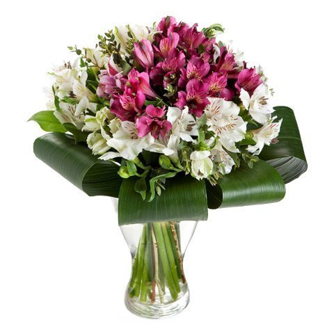 Elegance: 20 alstroemeria white and pink