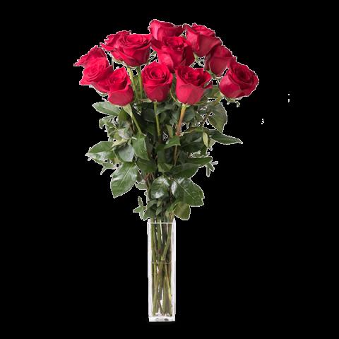 Love never felt so good: 12 rote Rosen von 70 cm Länge