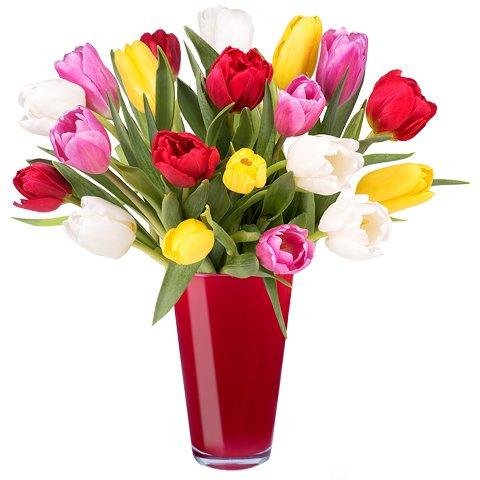 Barwy Wiosny: 30 kolorwych tulipanów
