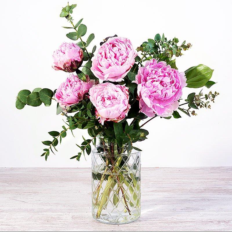 Pink Bunny: Peonías rosas