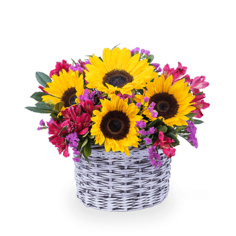 Sunny Joy: Sunflowers and Alstroemerias