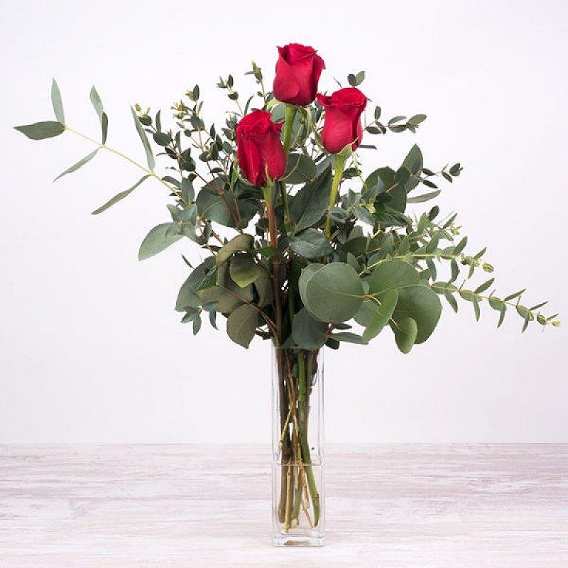 Penélope: 3 rosas rojas