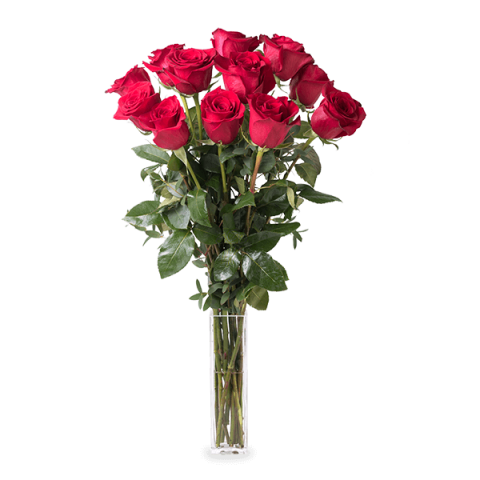 I will always love you: 12 long-stemmed roses
