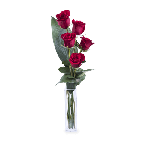 Amor e Elegancia: 5 rosas rojas