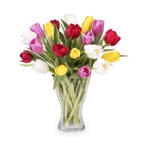 Frühlingsfreude: 20 Gemischte Tulpen