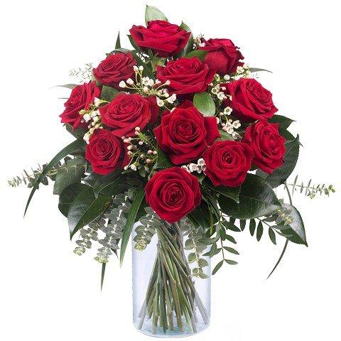 Amor Infinito: 12 Rosas Rojas