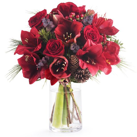 Surprise Gesture: Amaryllis and Red Roses