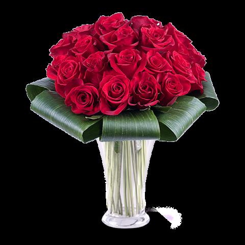 Waleczne Serce: 25 czerwonych Róż
