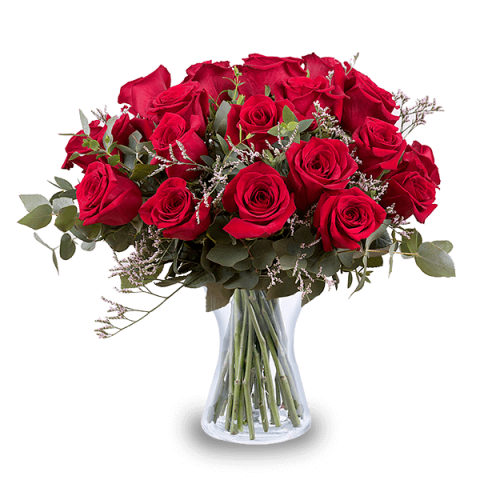 For My Inspiration: 24 Red Roses