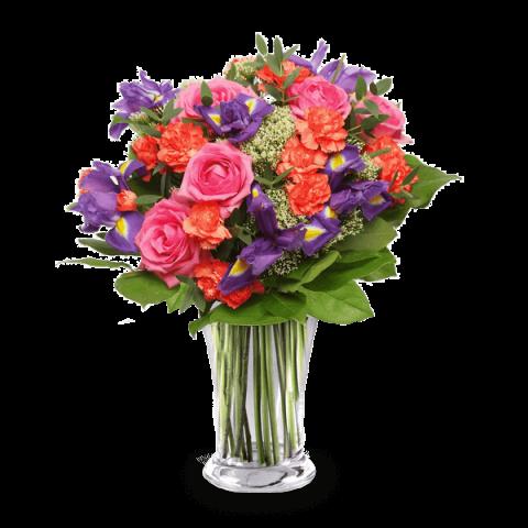 Tropische Brise: Rosen und Nelken