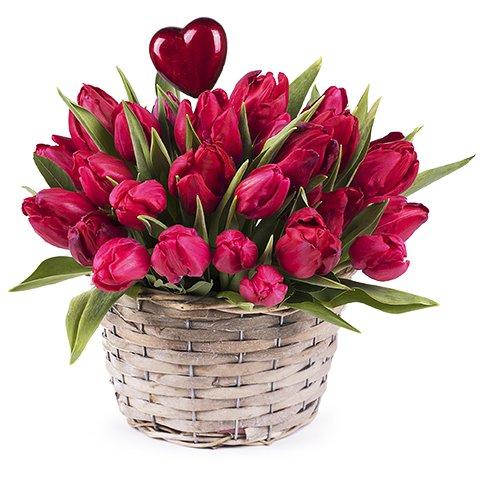 Beso Primaveral: Tulipanes Rojos