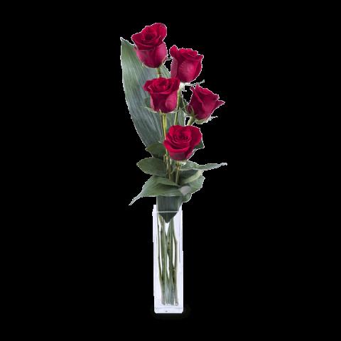 Amor E Elegancia 5 Rosas Rojas Floraqueen