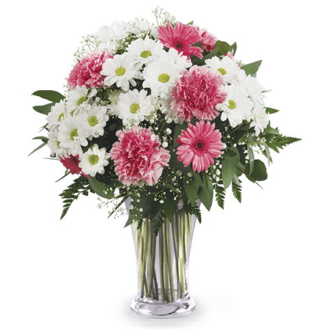 Cotton Candy: Gerberas and Carnations