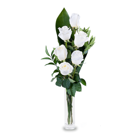 6 white roses international flower delivery floraqueen bright lights 6 white roses mightylinksfo