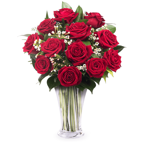 Sapore d'Amore: 15 Rose Rosse