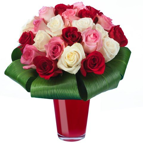 Rosen-Trio: Mix roter, rosa & weißer Rosen