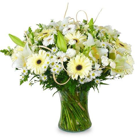 Elegancia Blanca: lirios y gerberas blancas