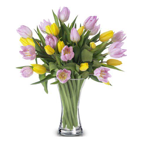 Frühlingsfest: Pinke und Gelbe Tulpen