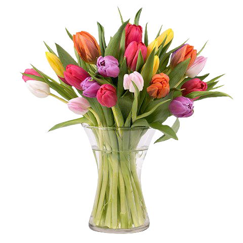 Spring Delight: 20 Mixed Tulips