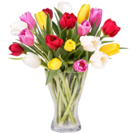 Printemps Coloré : 30 Tulipes Multicolores