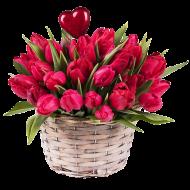 Bacio di Primavera: Tulipani Rossi
