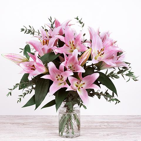 Amanecer perfecto: Lirios Rosas